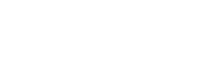 Lippes Mathias Wexler Friedman, LLP
